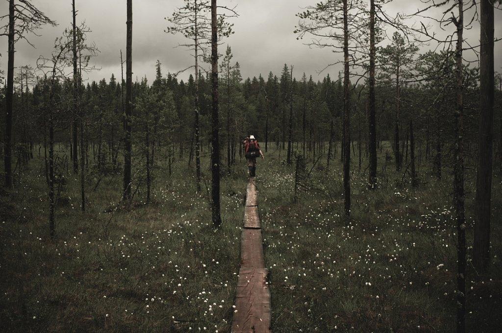 Straight path...